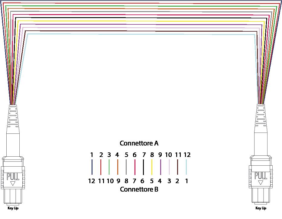 polarità dei cavi metodo B