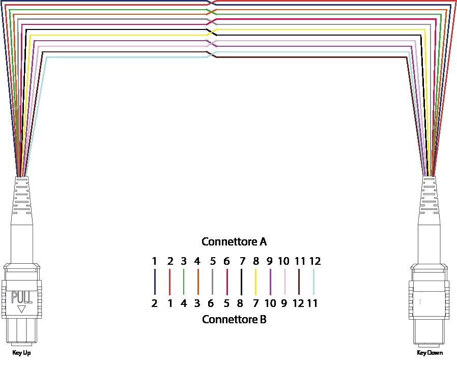 polarità dei cavi metodo C